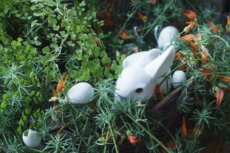 Mand met witte paashaas en eieren Stockfoto - 97694177