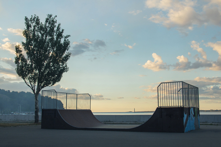skateboarder rides on a ramp on a sunset near the tree
