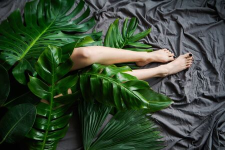 Legs of young woman with tropical leaves on gray background, top view