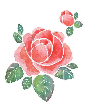 Watercolor roses for design 1.