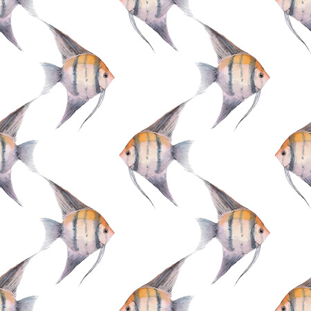 scalare: Scalare. Watercolor fish. Seamless pattern 1