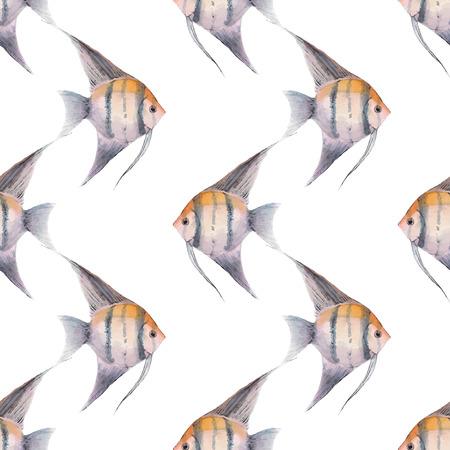 Scalare. Watercolor fish. Seamless pattern 1