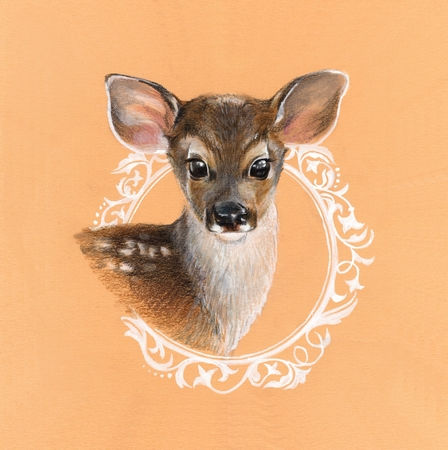 fawn: Fawn. Hand-drawn illustration Stock Photo
