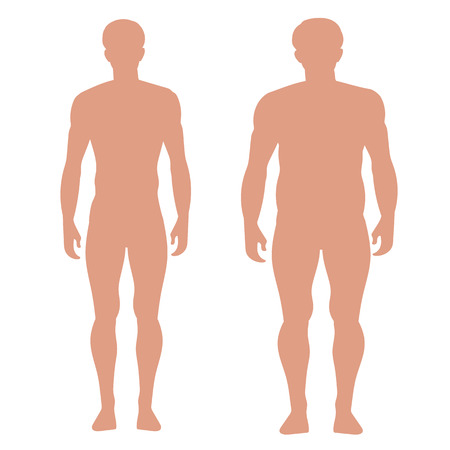 naked male body: slender and full male figures