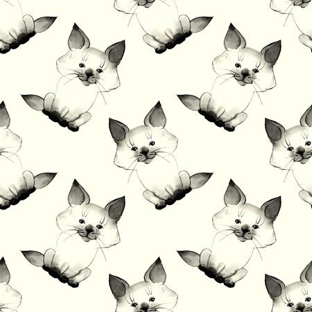baby  pussy: Kitten. Cute baby pattern 2 Stock Photo