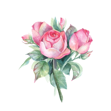 Roses. Small bouquet. Watercolor illustration