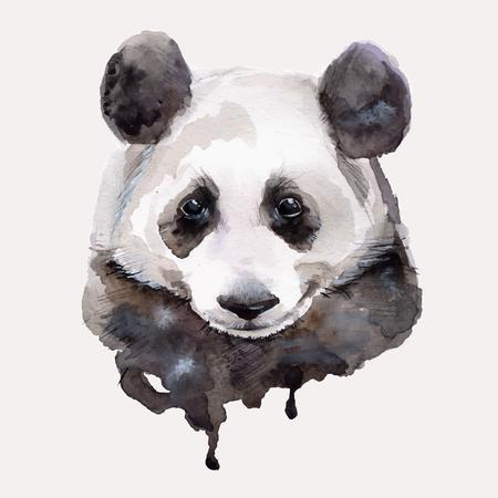 Panda.Watercolor illustration Vector
