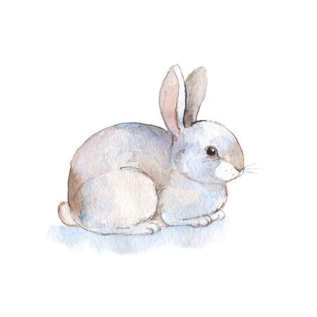 White rabbit 2. Watercolor illustration. Hand-drawn