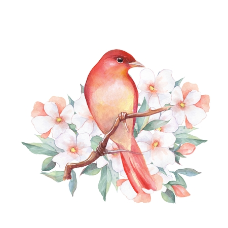 Bird on branch 3. Watercolor illustration with flowers