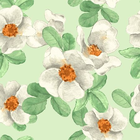 pastel color: White flowers. Seamless floral pattern. Hand drawn background 1