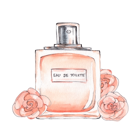 fragrance: Bottle of perfume. Ink and watercolor sketch 5. Isolated on white background
