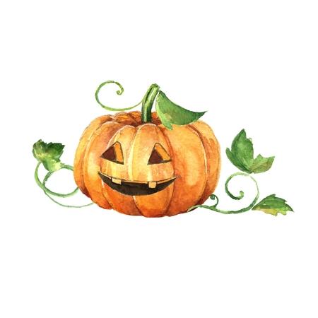 frightful: Halloween pumpkin. Watercolor painting   Hand drawn illustration
