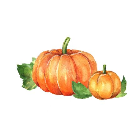Pumpkins. Watercolor painting. Hand drawn illustration Stock Photo