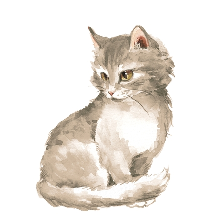 Cat. Gray fluffy kitten. Watercolor painting