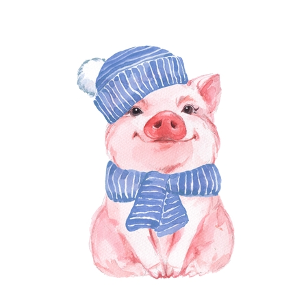 kid illustration: Funny pig in a blue hat and scarf. Cute watercolor illustration Stock Photo