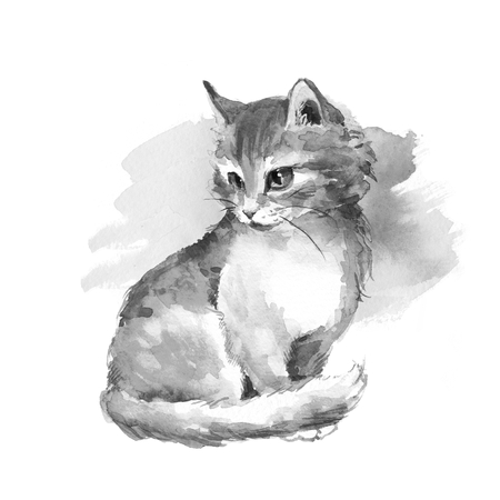 fluffy: Cat 1. Fluffy kitten. Black and white watercolor painting