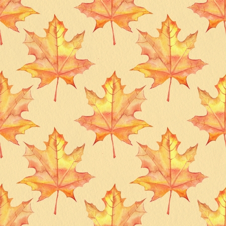 papaer: Maple leaves. Watercolor painting. Seamless pattern. Background on paper texture