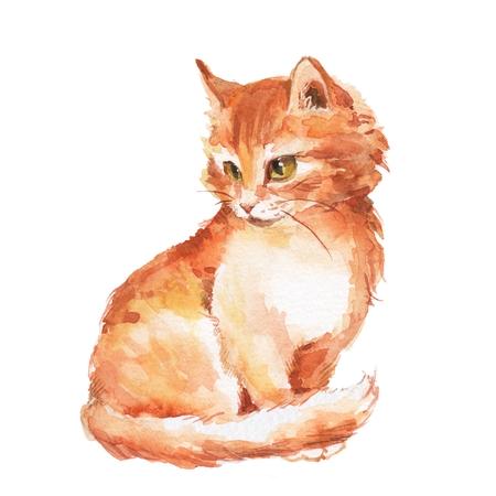 Cat 1. Ginger fluffy kitten. Watercolor painting