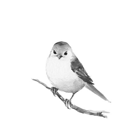 Petit oiseau sur la branche 1. Black et peinture à l'aquarelle blanc. Banque d'images - 64237675