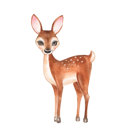 Baby Deer. Hand drawn cute deer. Cartoon illustration, isolated on white. Watercolor painting Stock Photo