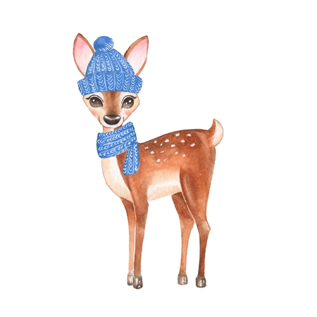 baby deer: Baby Deer. Knitted cup and scarf. Hand drawn cute fawn. Cartoon illustration, isolated on white. Watercolor painting