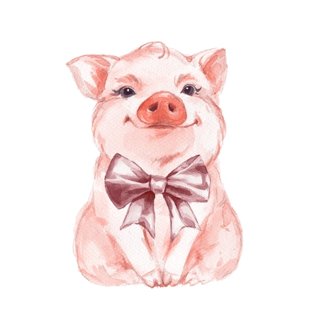 Funny pig and bow. Isolated on white. Cute watercolor illustration