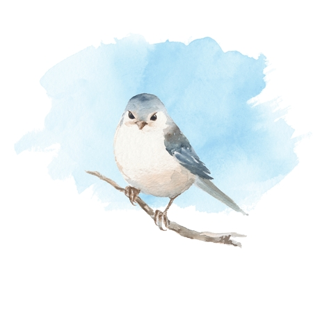 cor: Cute watercolor bird and blue sky. Hand painted watercolor illustration