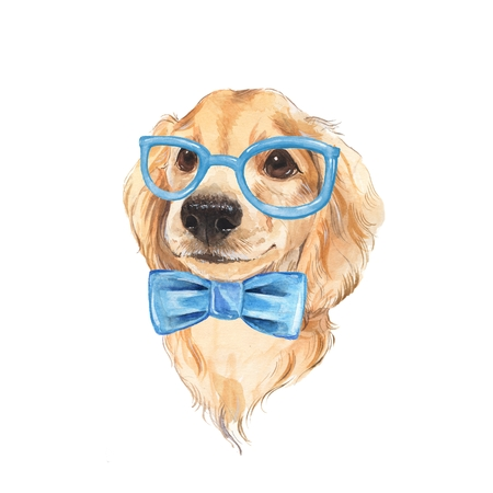 painted dog: Cute dog sketch. Blue bow tie. Hand painted. Watercolor illustration.