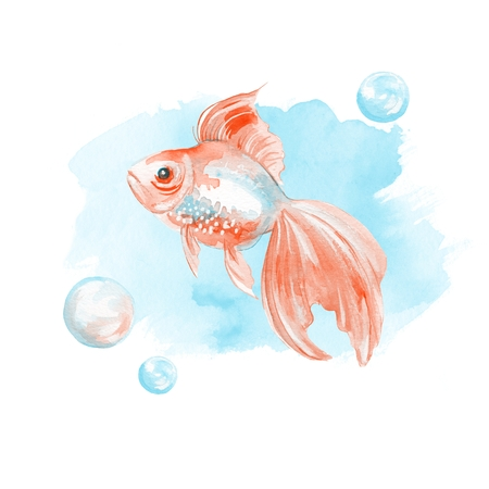 Watercolor fish. Hand-drawn illustration. Goldfish and bubbles on blue background