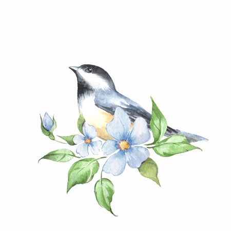 Bird and floral branch. Watercolor painting 4