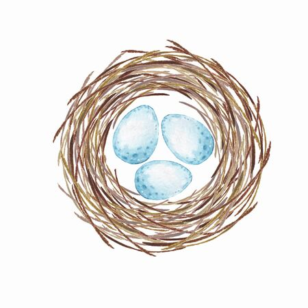 Birds nest with eggs. Watercolor illustration Imagens - 78491394