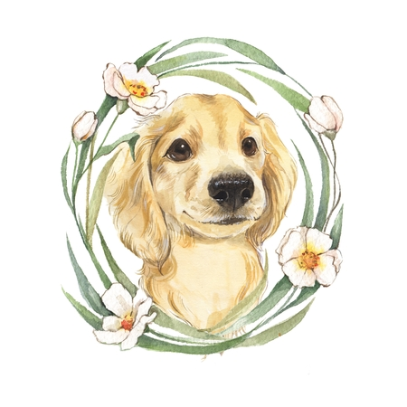 Cute dog sketch. Hand painted. Watercolor illustration.