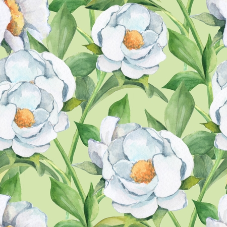 Floral seamless pattern. Watercolor background with white flowers