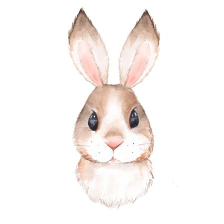 Lapin mignon. Illustration aquarelle. Isolé sur fond blanc 2 Banque d'images - 81592468