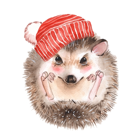Cute hedgehog. Knitted hat with pompon