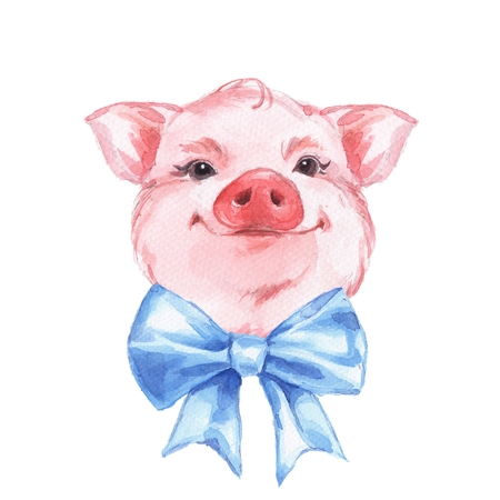 Funny pig and bow. Cute watercolor illustration Stock Photo
