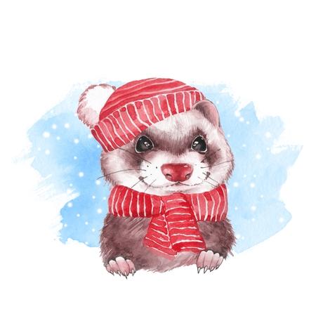 Cute ferret in hat. Watercolor illustration Zdjęcie Seryjne