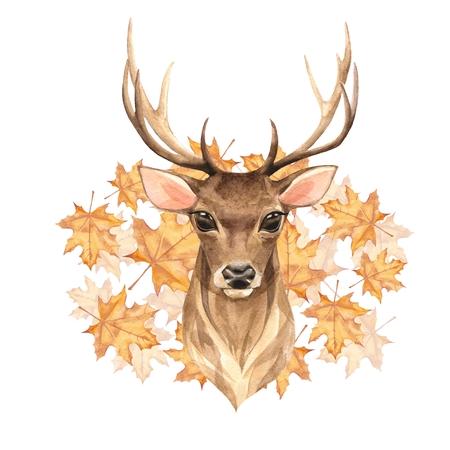 Noble deer, autumn. Watercolor illustration