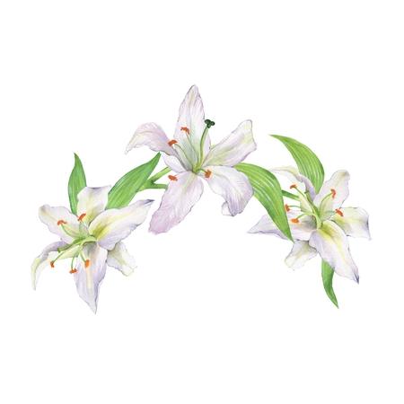 Acquerello ramo floreale con gigli. Corona 1 Archivio Fotografico - 88169597