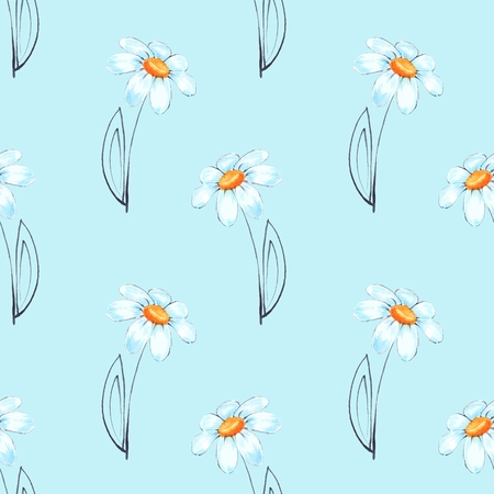 Floral seamless pattern with Chamomile
