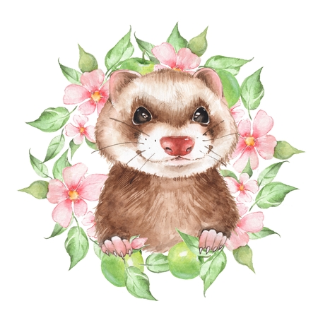 Cute ferret. Watercolor illustration