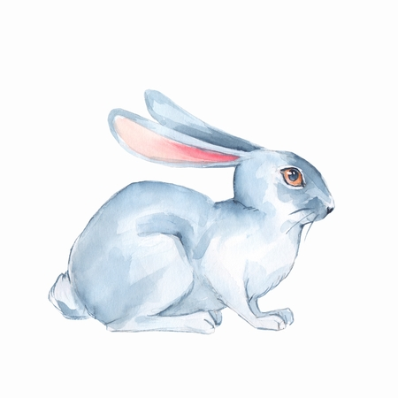 White rabbit. Watercolor illustration 1 Foto de archivo - 95581779