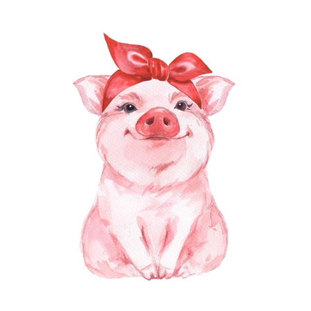 Funny pig wearing bandana. Isolated on white. Cute watercolor illustration