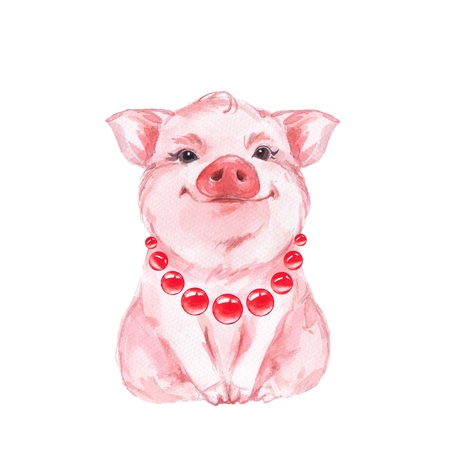 Funny pig. Isolated on white. Cute watercolor illustration