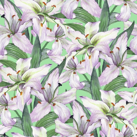Pattern with lilies. Floral seamless watercolor background with white flowers.