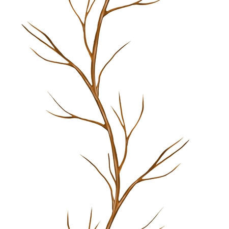 Dry branch. Seamless border isolated on white background