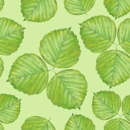 Summer seamless pattern with green watercolor leaves Stock Photo