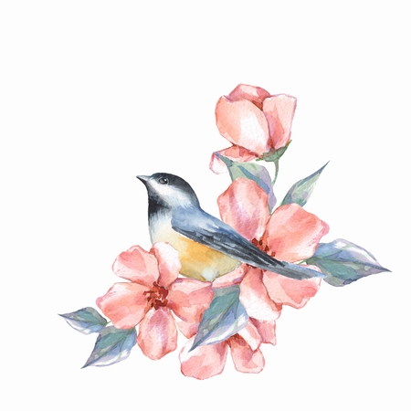 Titmouse bird and pink flowers. Watercolor painting