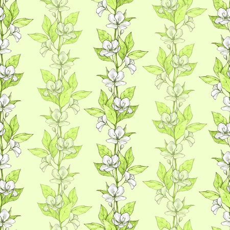 Floral seamless pattern. Watercolor background with white flowers and green leaves