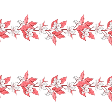 Seamless border with white flowers and pink leaves.. Floral background, hand drawn
